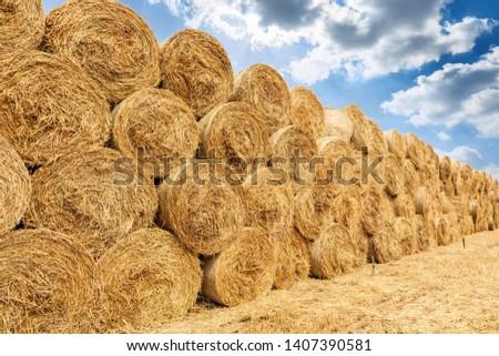 Straw bales on farmland with blue cloudy sky #1407390581
