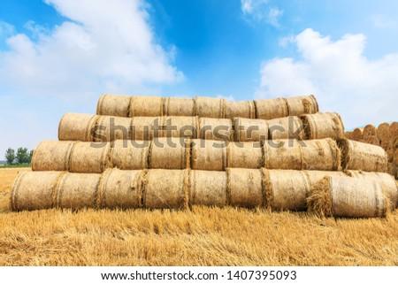 Straw bales on farmland with blue cloudy sky #1407395093