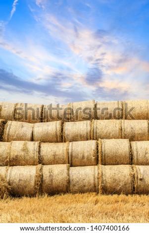 Round straw bales haystack on farmland at sunset #1407400166