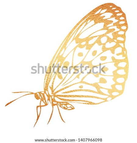 Gold butterfly hand-drawn illustration on a white background