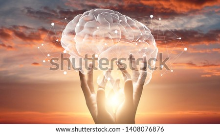 Mind and mental health. Female hands touching brain with network connections, sunset sky background #1408076876