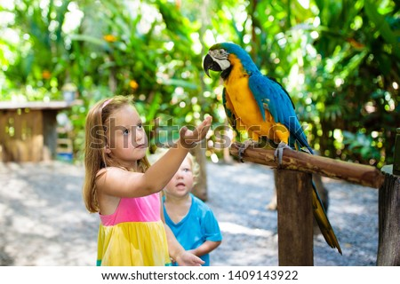 Kid feeding macaw parrot in tropical zoo. Child playing with big rainforest bird. Kids and pets. Children play and feed wild animals in safari park in sunny summer day. Little girl watching parrots. #1409143922