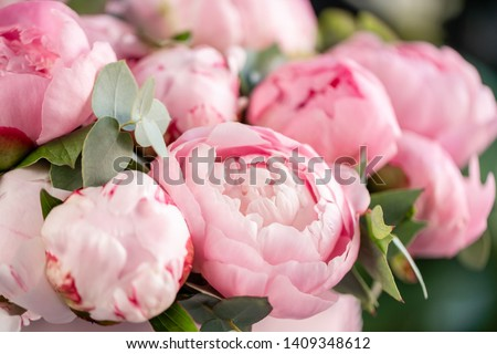 Close-up of flowers Pink peonies . Beautiful peony flower for catalog or online store. Floral shop concept . Beautiful fresh cut bouquet. Flowers delivery