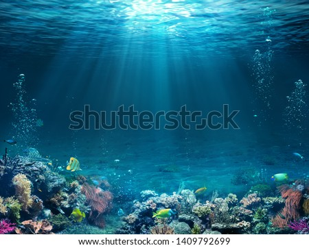 Underwater Scene - Tropical Seabed With Reef And Sunshine  #1409792699