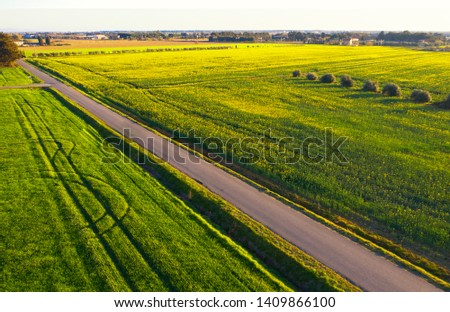 Drone view of country road in Tuscany landscape, Italy #1409866100