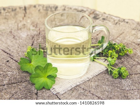 Alchemilla vulgaris, common lady's mantle medicinal herbal tea concept. Composition on natural wooden background. Instagram style filter. #1410826598