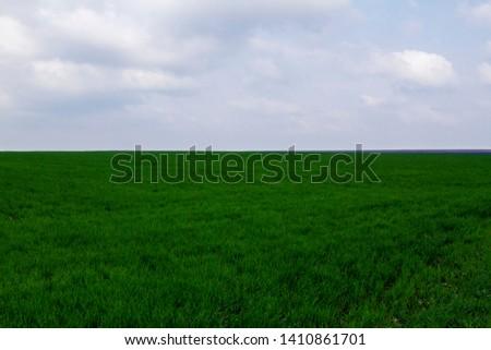 Field. Green field. Plowed field. Sowed field. #1410861701