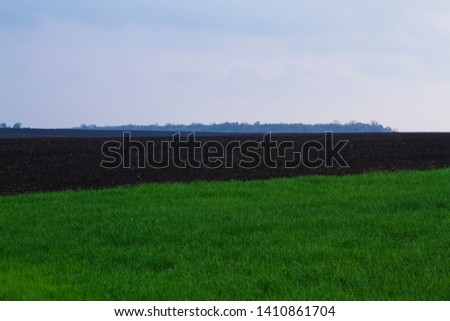 Field. Green field. Plowed field. Sowed field. #1410861704