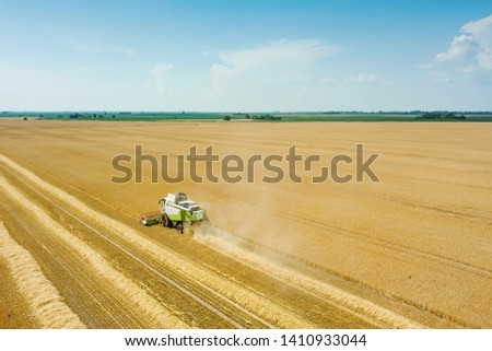 Combine harvester working on a wheat field. Combine harvester Aerial view.  #1410933044
