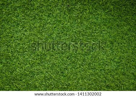 Green artificial grass natural background #1411302002