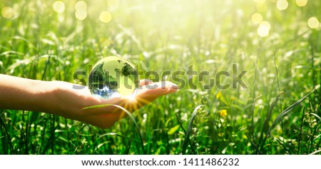 Earth glass globe in human hand on green grass background. Saving environment concept. #1411486232