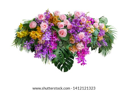 Pink rose and orchid flowers with tropical green leaves Monstera and palm frond bush, floral arrangement nature backdrop isolated on white background with clipping path. Royalty-Free Stock Photo #1412121323