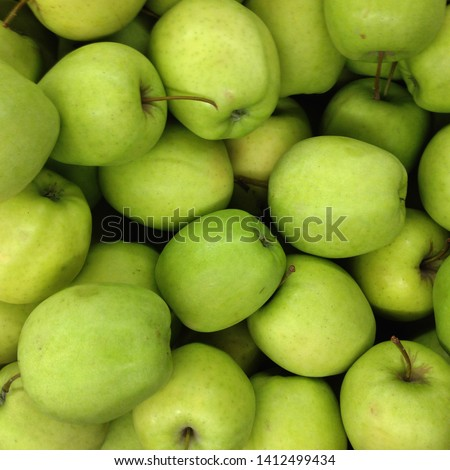 Macro Photo food fruit green apples. Texture background ripe juicy fruits apples. Image product apples grade Golden