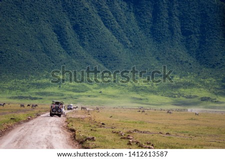 Landscapes of the Ngorongoro crater, Ngorongoro national park Royalty-Free Stock Photo #1412613587