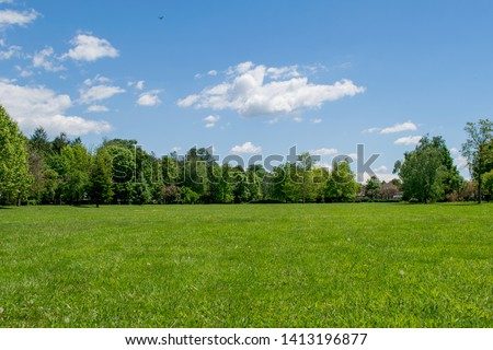 a beautiful spring decoration. Green grass, birds on the blue sky #1413196877