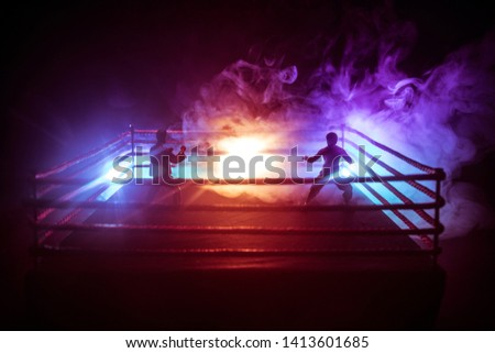 Karate athletes fighting scene on boxing ring with red ropes. Character karate. Posing figure artwork decoration. Sport concept. Decorated foggy background with light. Selective focus #1413601685