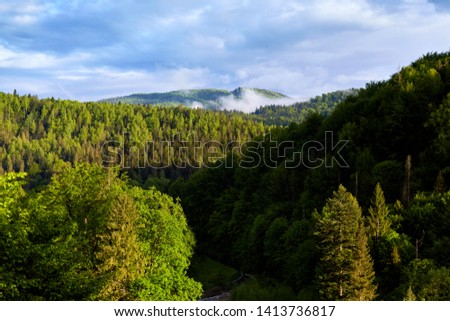 Outdoor photo of wonderful landscape of forest, lots of green trees, blue sky with clouds, beautiful summer day, interesting place for visiting, awesome scenery. Traveling and sightseeing concept. #1413736817