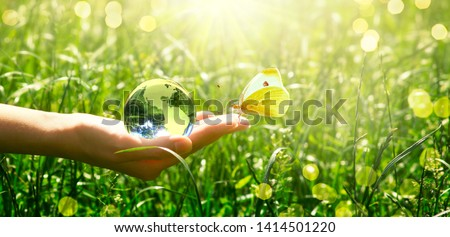 Earth glass globe and butterfly with yellow wings in human hand on green grass background. Saving environment concept. #1414501220