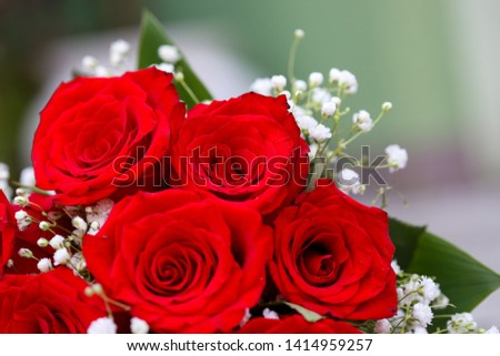 A bouquet of red roses with tiny white flowers and green leaves. #1414959257