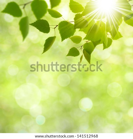 Abstract natural backgrounds with beauty bokeh #141512968