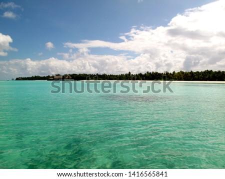 Sand beach with palm trees Maldives #1416565841