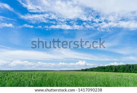 Field view, sky, clouds. Landscape. Horizon. #1417090238