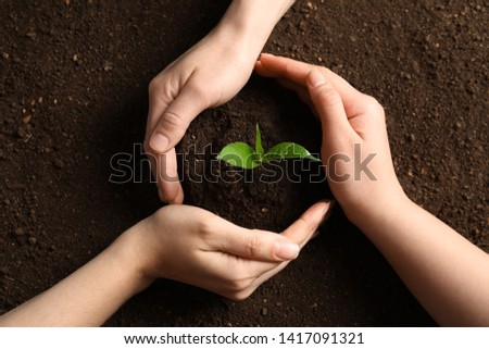 People protecting young seedling on soil, top view #1417091321