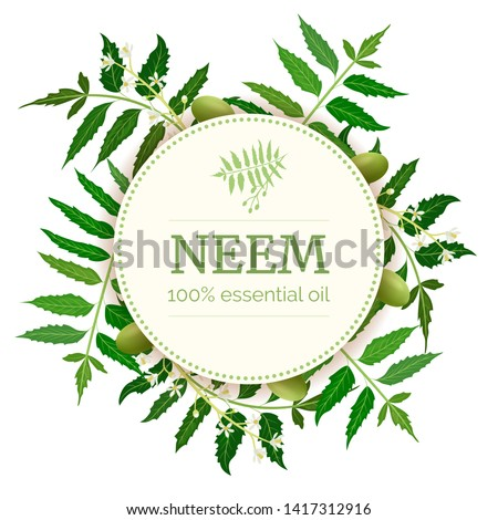 Neem Round Circle badge. leaf branch, flowers and pods. Ayurveda Herb template. Used for alternative medicine, cosmetics, health care product, aromatherapy, enclosure, flyer, flier, text copy space #1417312916