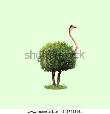 Ostrich with the body as a tree with leaves on green background. Concept of interaction of different nature objects. Negative space. Modern design. Contemporary and creative art collage. #1417418141