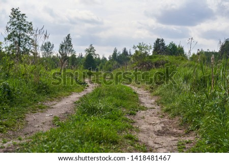 Old country dirt road in the middle of the forest #1418481467