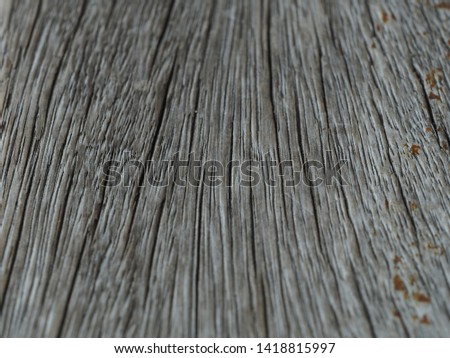 surface texture of wood in grey color #1418815997