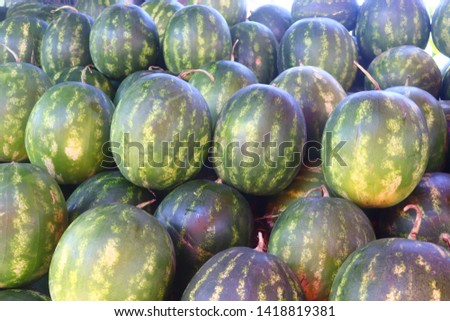 Watermelon group from a marketplace. Watermelons sold at the market. Fruit Background. #1418819381
