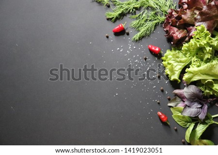 Background with lettuce, Basil, pepper, dill. The concept of proper nutrition, diet. #1419023051