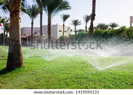 Lawn irrigation system. Spraying water on the lawn in very hot weather. #1419090131