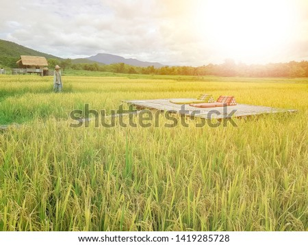 Bamboo Veranda with two Thai Triangle Cushion Pillows in golden ear jasmine rice field view in Thailand countryside paddy field in sunset sunray. Thailand Agro-tourism in organic farm from nature. #1419285728