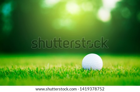 Golf ball is on a green lawn in a beautiful golf course with morning sunshine.Ready for golf in the first short.Sports that people around the world play during the holidays for health. #1419378752
