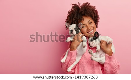 Happy female pet lover poses with two pedigree dogs, tilts head, has curly hair, wears pink sweater, isolated over rosy background, free space for your advertising. Friendship, people, animals concept #1419387263