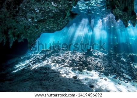 Underwater Gran Cenote Yucatan Mexico  #1419456692