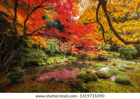 Beautiful autumn colorful leaf garden with pond at Nanzen-ji Temple, Kyoto, Japan. Famous travel landmark during fall season, Kansai.