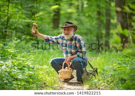 Happy Grandfather - summer and hobbies. Old man walking. Grandpa Pensioner. Senior hiking in forest. Gathering mushrooms in wild forest #1419822215