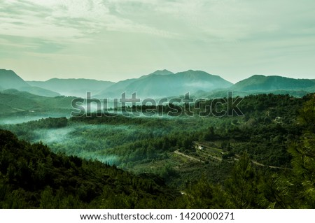 foggy mountains and mysterious forest  #1420000271
