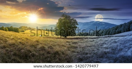 day and night time change concept above the beech tree on the meadow in mountains. landscape with sun and moon. wonderful summer scenery of carpathian countryside. mountain ridge in the distance. #1420779497