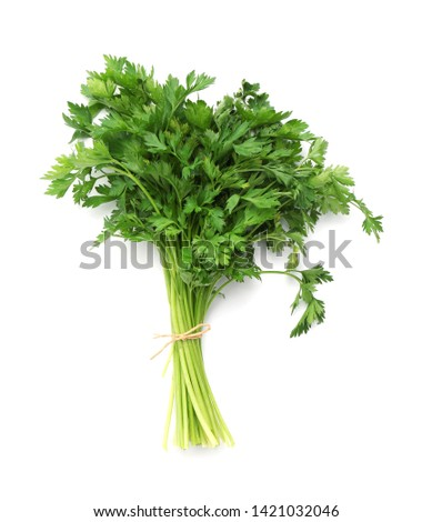 Bunch of fresh parsley isolated on white, top view #1421032046
