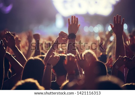 Picture of party people at music festival #1421116313