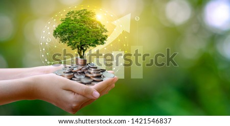 hand Coin tree The tree grows on the pile. Saving money for the future. Investment Ideas and Business Growth. Green background with bokeh sun #1421546837