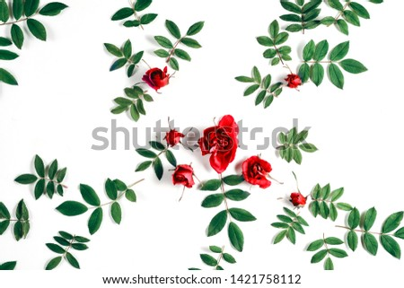 Floral pattern made of red roses, green leaves, branches on white background. Flat lay, top view. Nature background. Pattern of flowers. Flowers pattern texture #1421758112