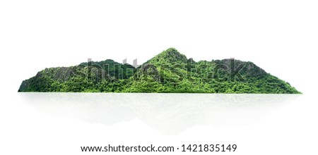 rock mountain hill with  green forest isolate on white background #1421835149