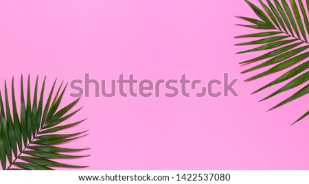 Frame of tropical palm leaves on pastel pink background. Flat lay, top view, copy space. Summer background, nature. Creative minimal background with tropical leaves. Leaf pattern #1422537080