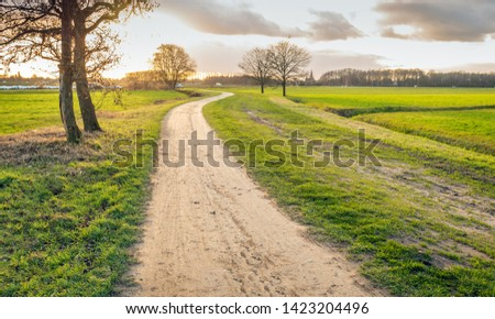 Backlit image of a Dutch landscape with a meandering sandy path. The photo was taken in the Binnenpolder near the village of Terheijden, Drimmelen, North Brabant. #1423204496