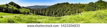 Landscape of Pieniny and Gorce mountain range in beskids in Poland. Pieniny Mountains in the south of Poland. Located within the Pieniny National Park in Lesser Poland Voivodeship. Poland - Slovakia.  #1423206833